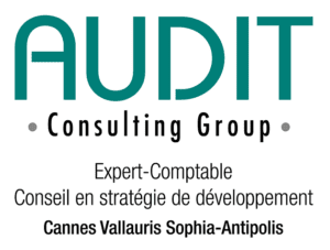 sogedev_audit_consulting_group_2
